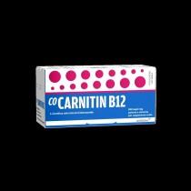 Cocarnetina B12 Orale Sosp 10 Flaconcini 10 Ml 500 Mg + 2 Mg