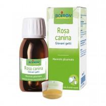 Rosa Canina Macerato Glicerico 60 Ml