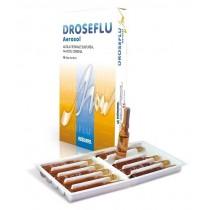 Droseflu Fiale Aerosol Acqua Termale Sulfurea 10 Fiale Da 2 Ml